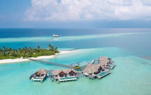 NIYAMA  RESORT MALDIVES